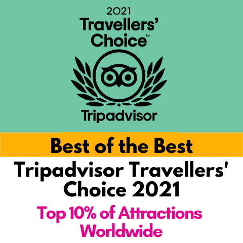2021 Wellaholic Awards - Travellers Choice 2021 b