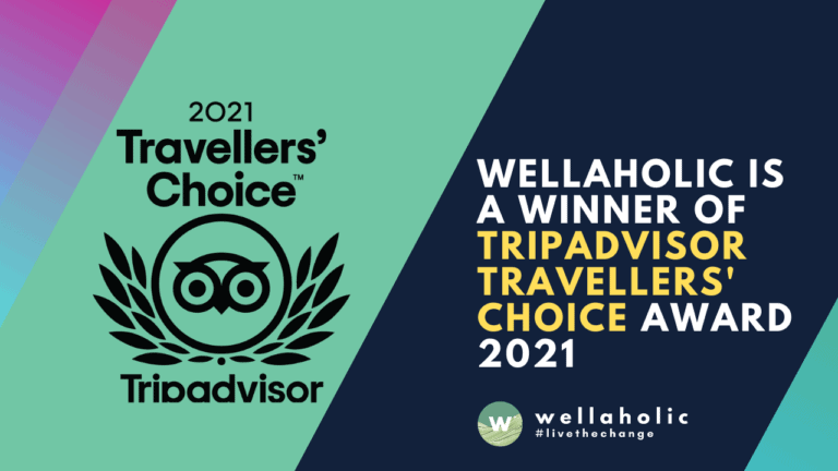 2021 Wellaholic Youtube & Website - Travellers Choice Awards 2021