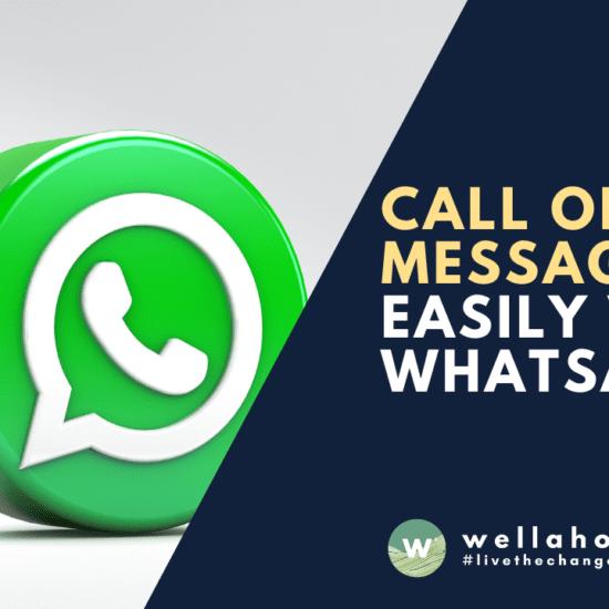 Call or message Wellaholic easily via whatsapp