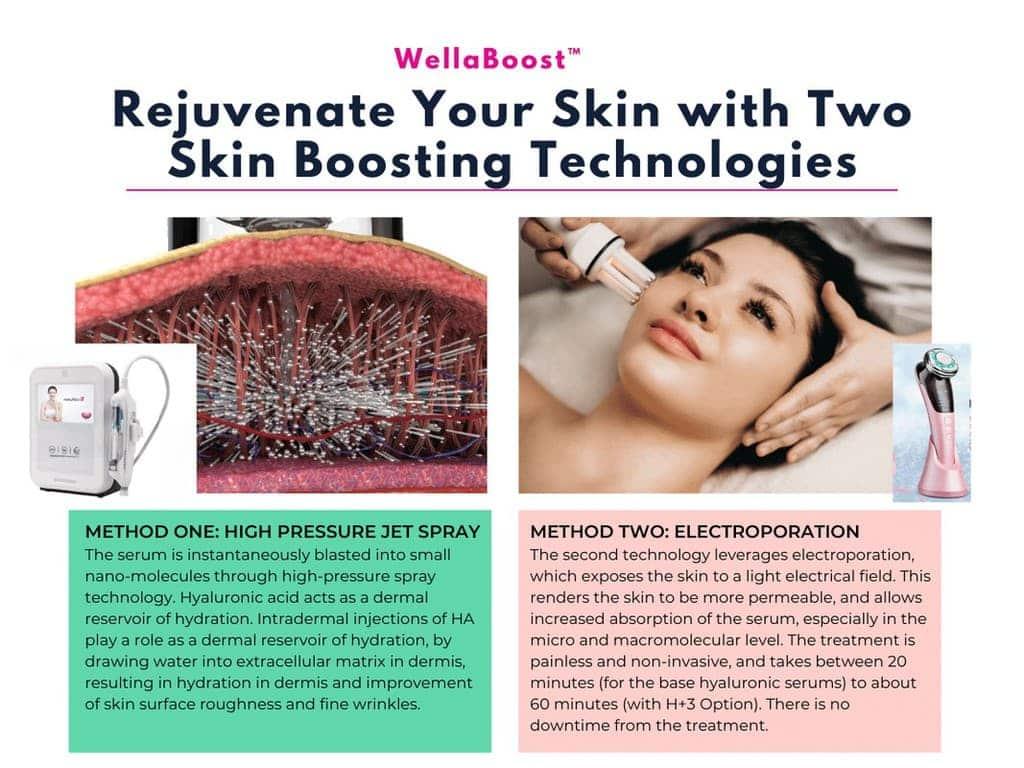 WellaBoost Skin Booster